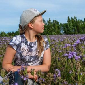 фестиваль полевых цветов